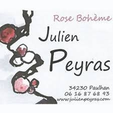 logo-domaine-julien-peyras